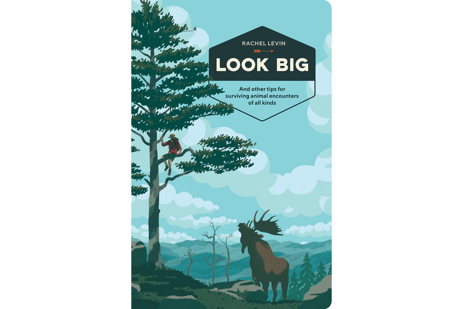 Look Big, by Rachel Levin (father's day)
