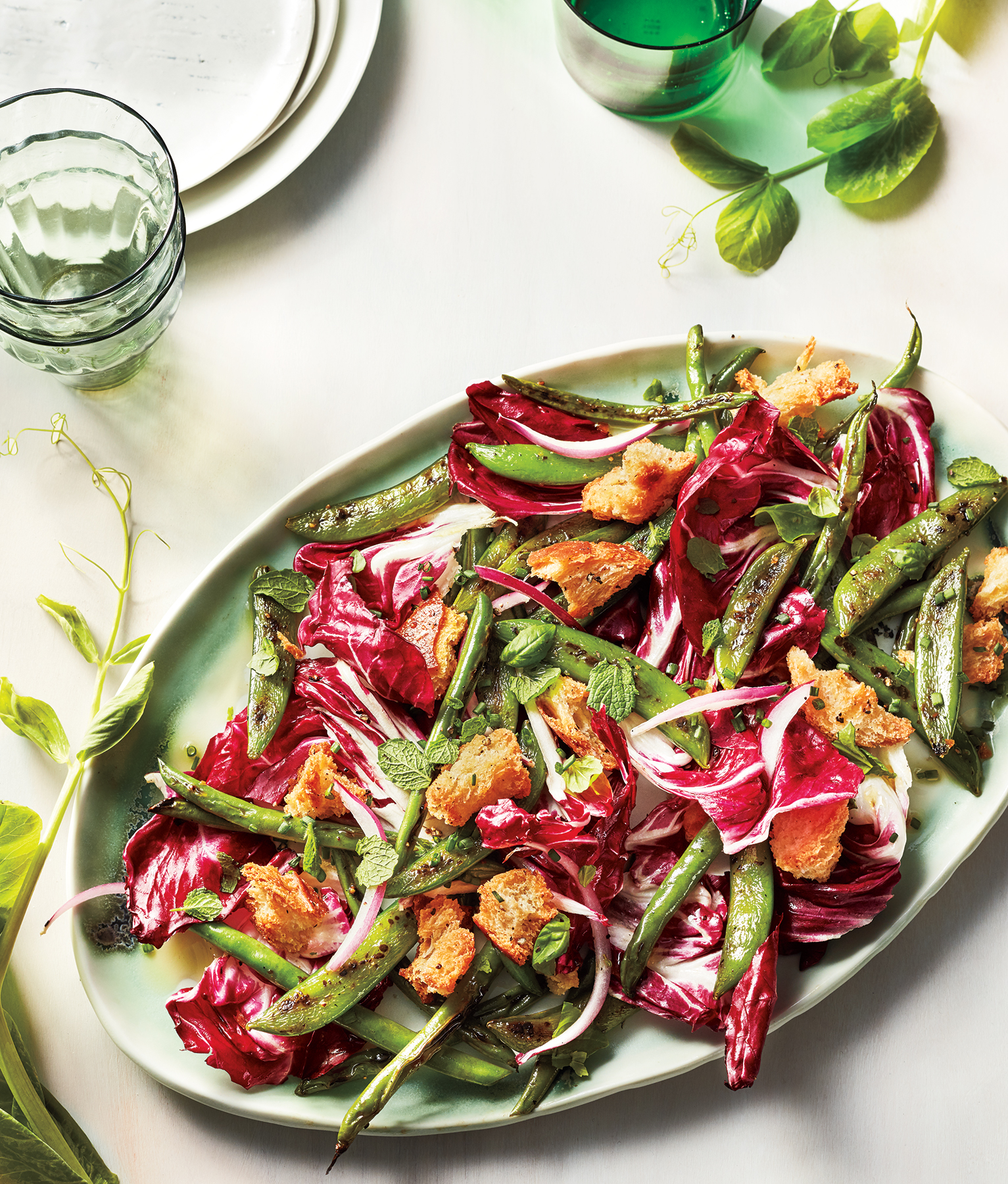 Radicchio Panzanella With Charred Snap Peas and Beans (0518FOO)