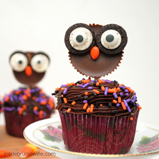 reeses-owls