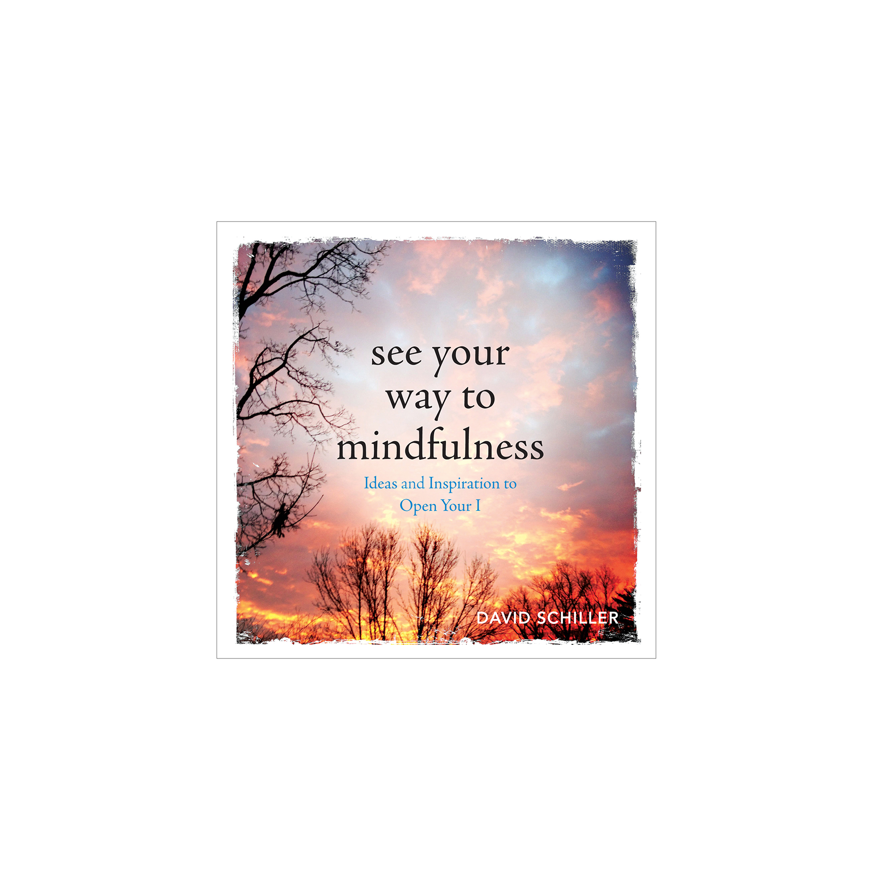 See Your Way to Mindfulness, by David Schiller