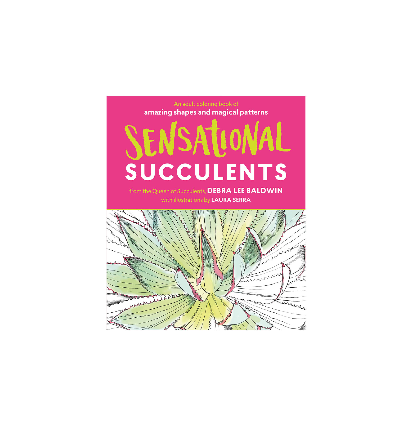 sensational-succulents-adult-coloring-book