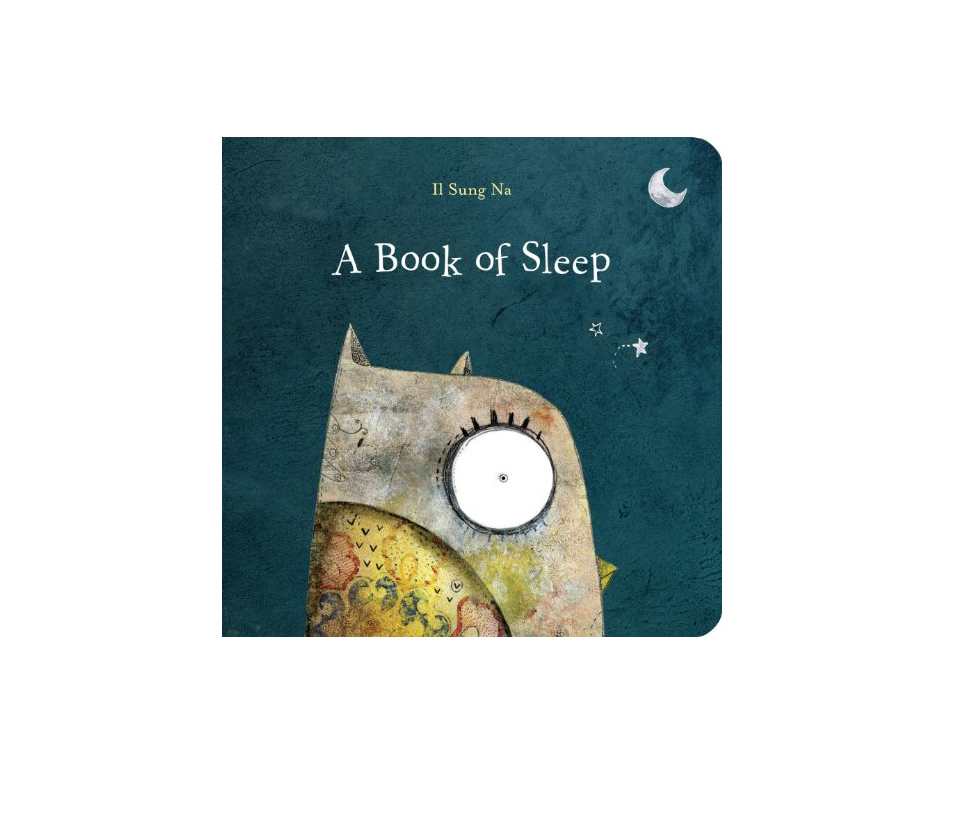 A Book of Sleep By II Sung Na