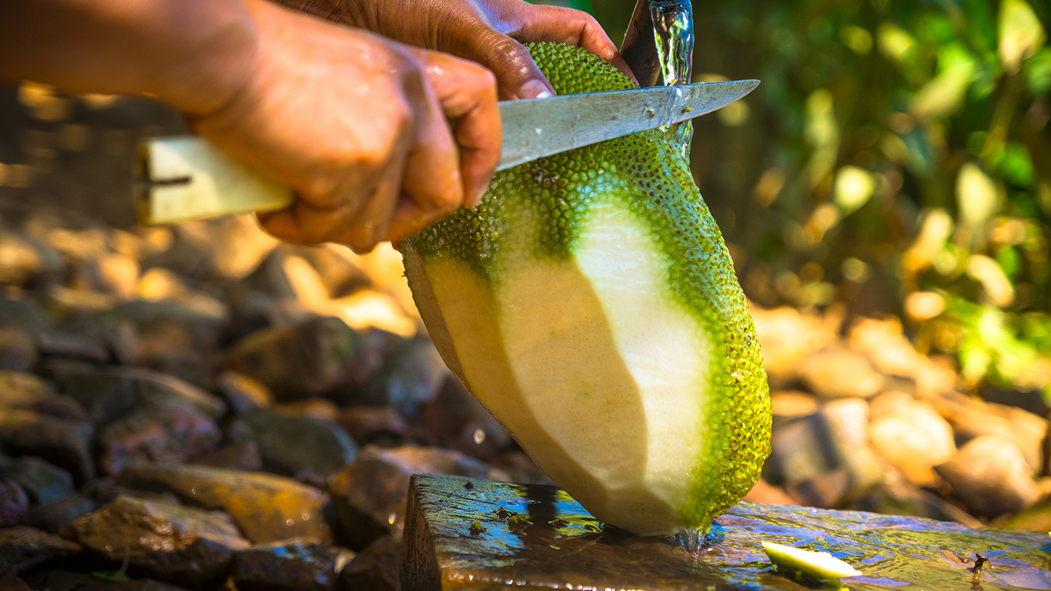 What Does Jackfruit Taste Like?