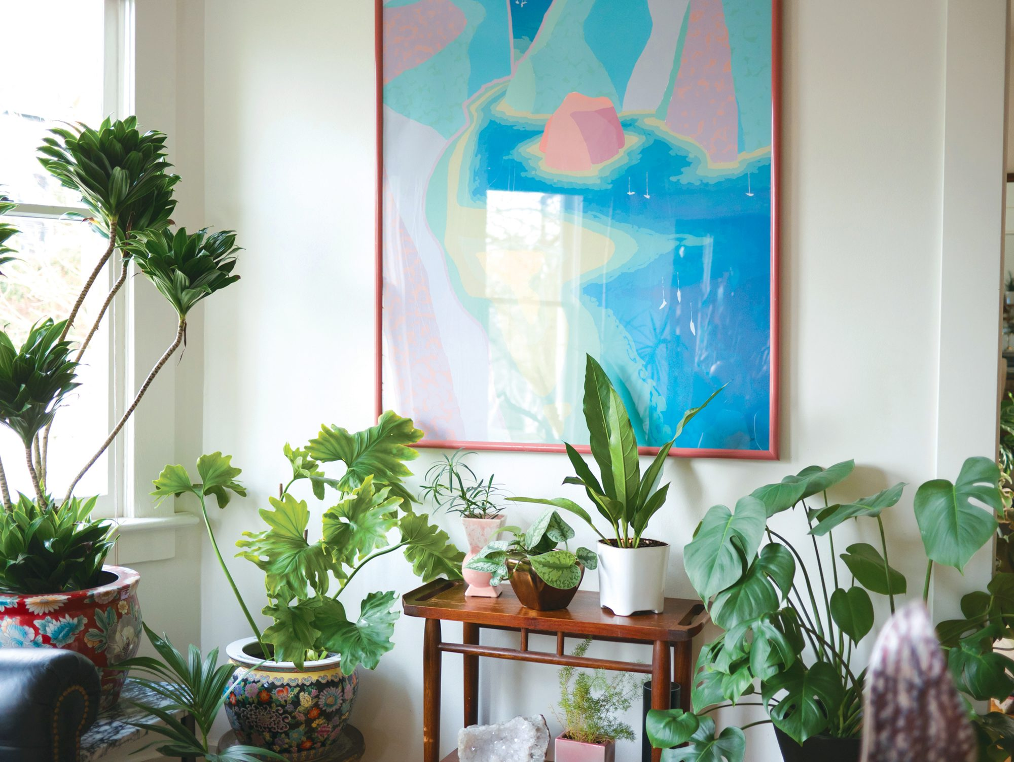 Follow These 4 Very Simple Steps to Keep Your Houseplants Alive (Even If You Have a Black Thumb)