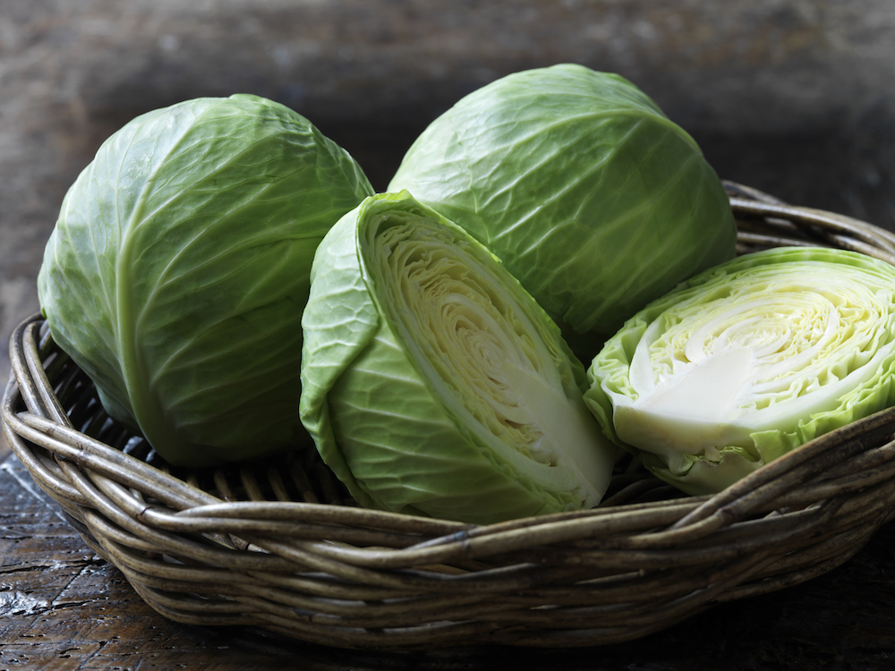 Winter Produce: Cabbage