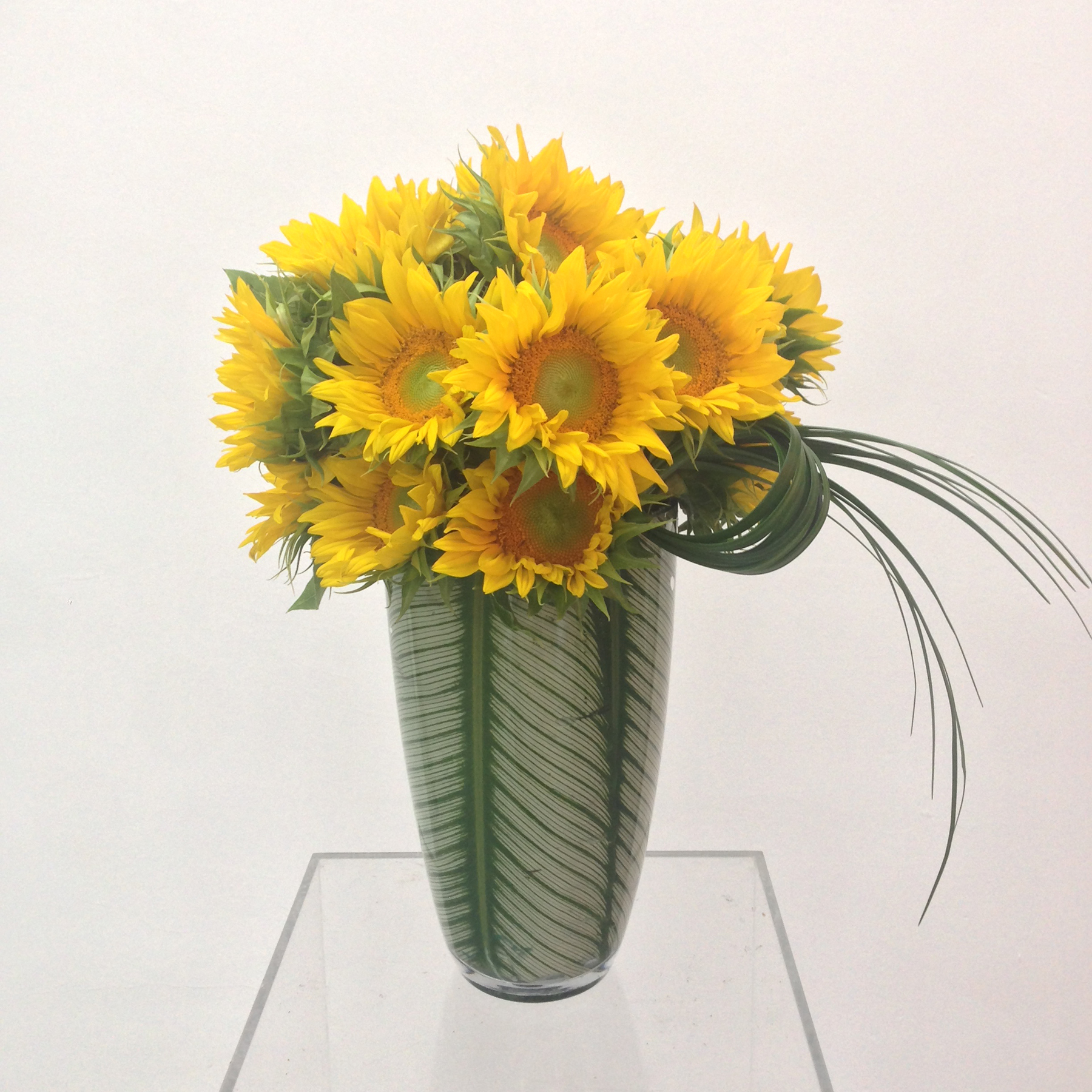 Sunflowers in a lined vase