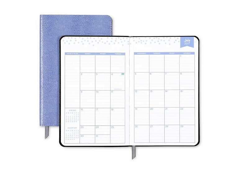 Blue Sky Day Designer Planner Monthly View