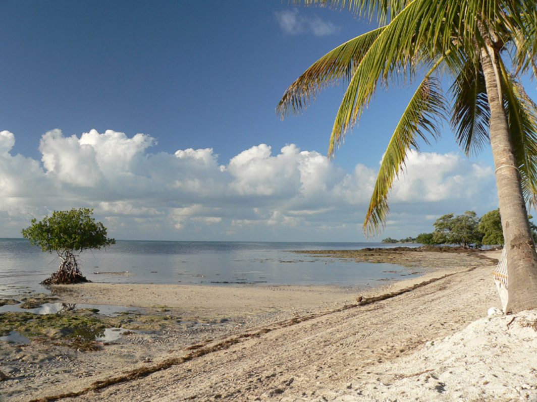 Book an All-Inclusive Stay on Big Pine Key