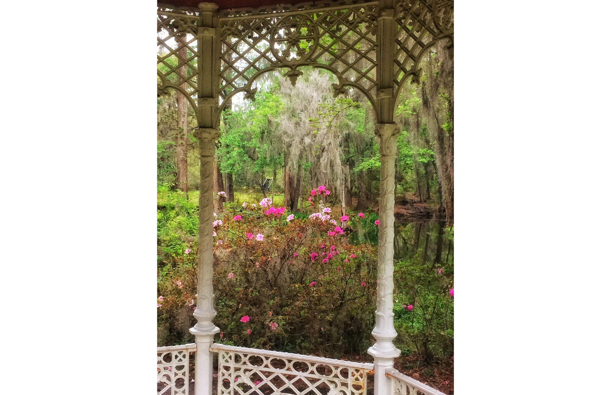 Find the Magic of Magnolia Gardens - Southern Living