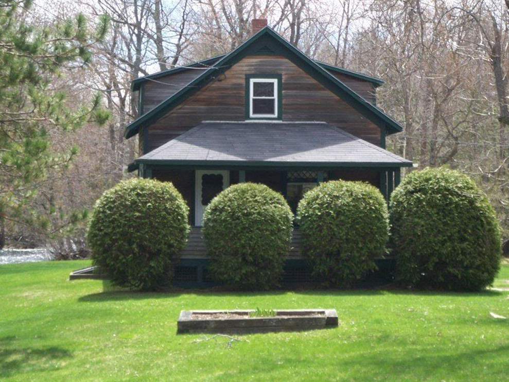 House Covered by Bushes