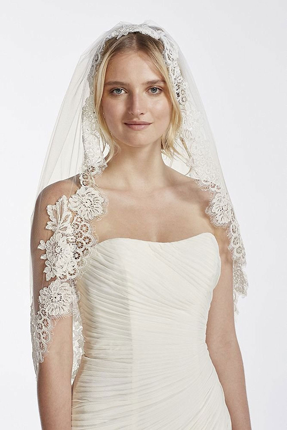 Veil with Trailing Lace