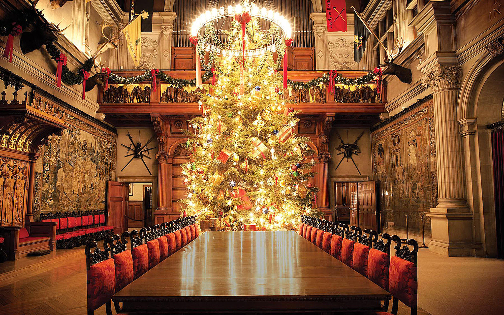 North Carolina's Biltmore Christmas Tree in Asheville