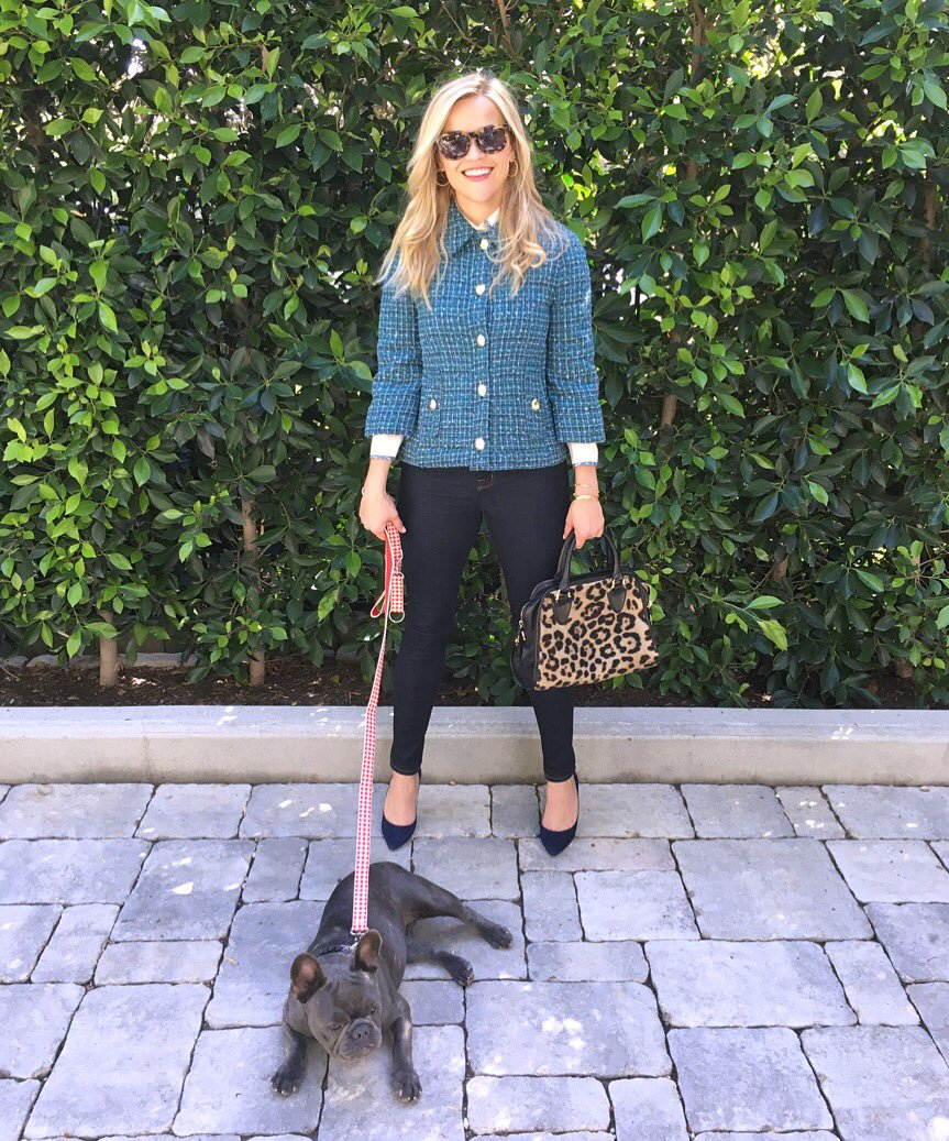Pepper the Dog Walks with Reese