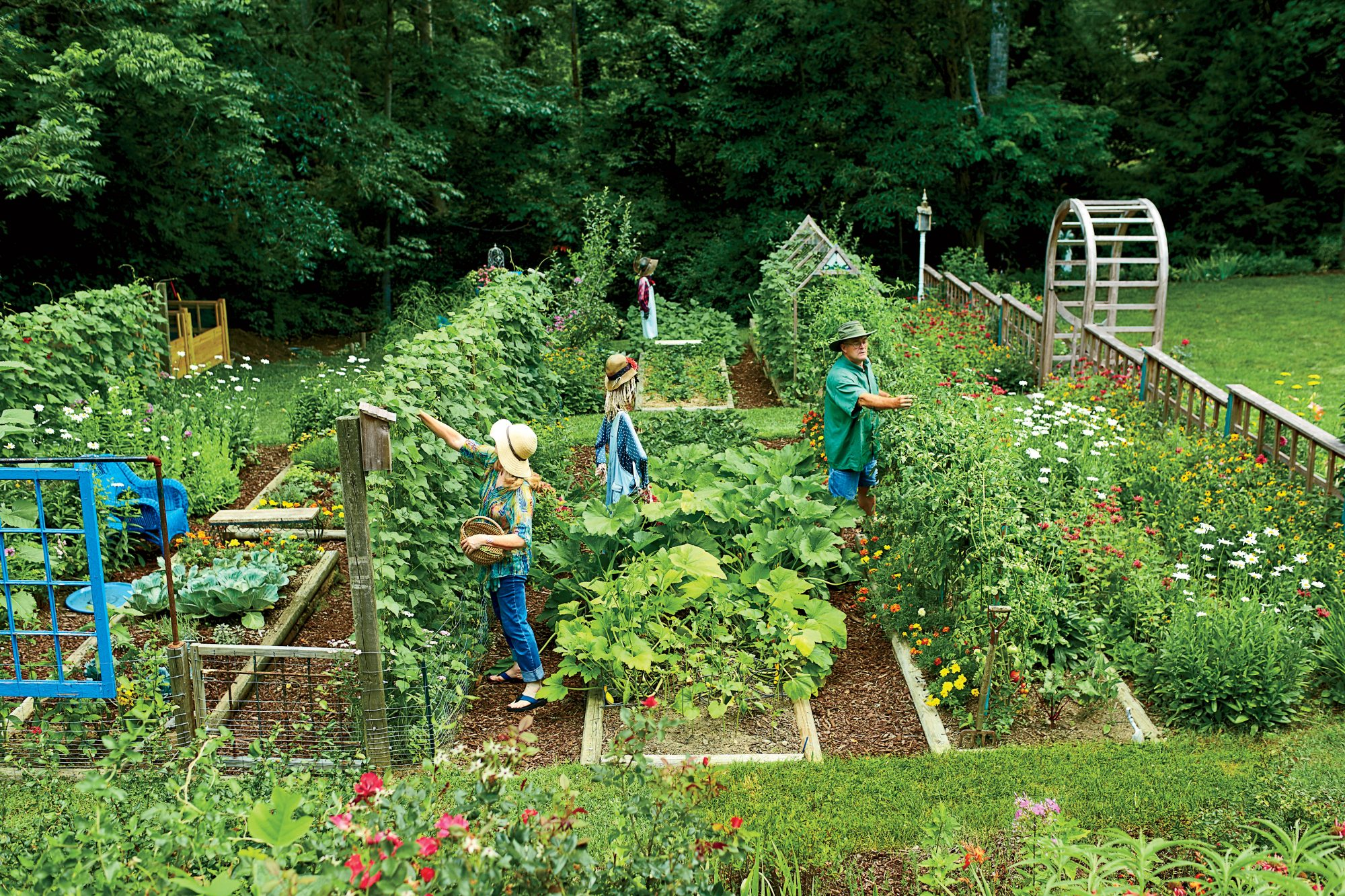 Steal these secrets for growing your own veggie patch for Stylish vegetable garden