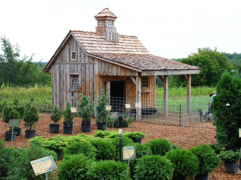 Incroyable Rustic Garden Shed