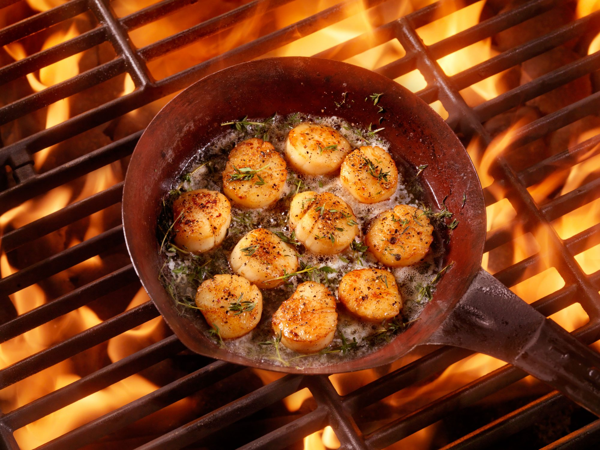 scallops on the grill
