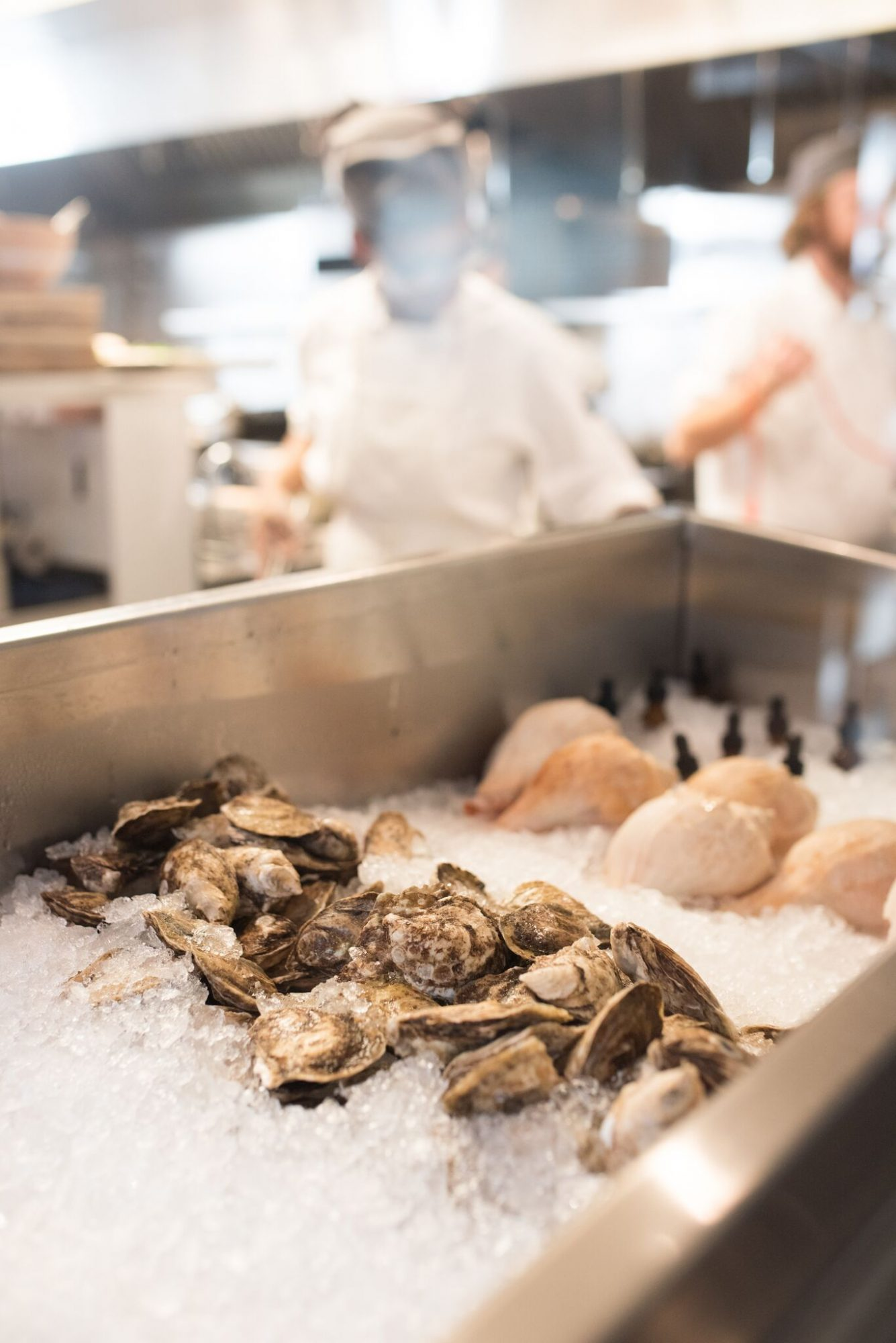 The Grey Oyster Bar