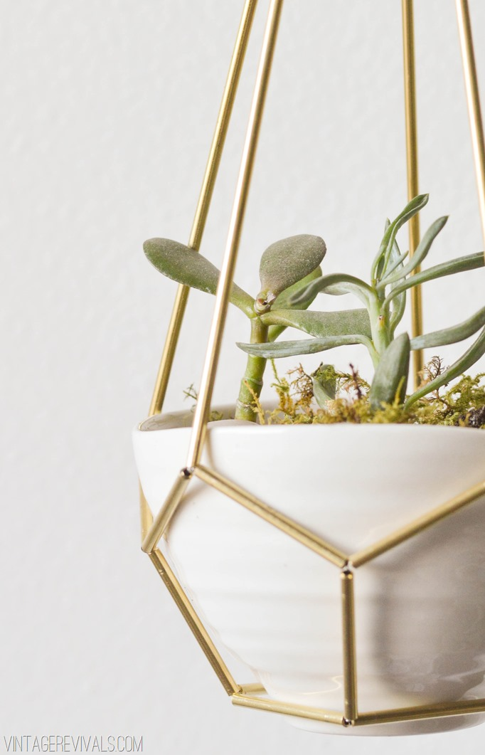 Brass and Leather Planter