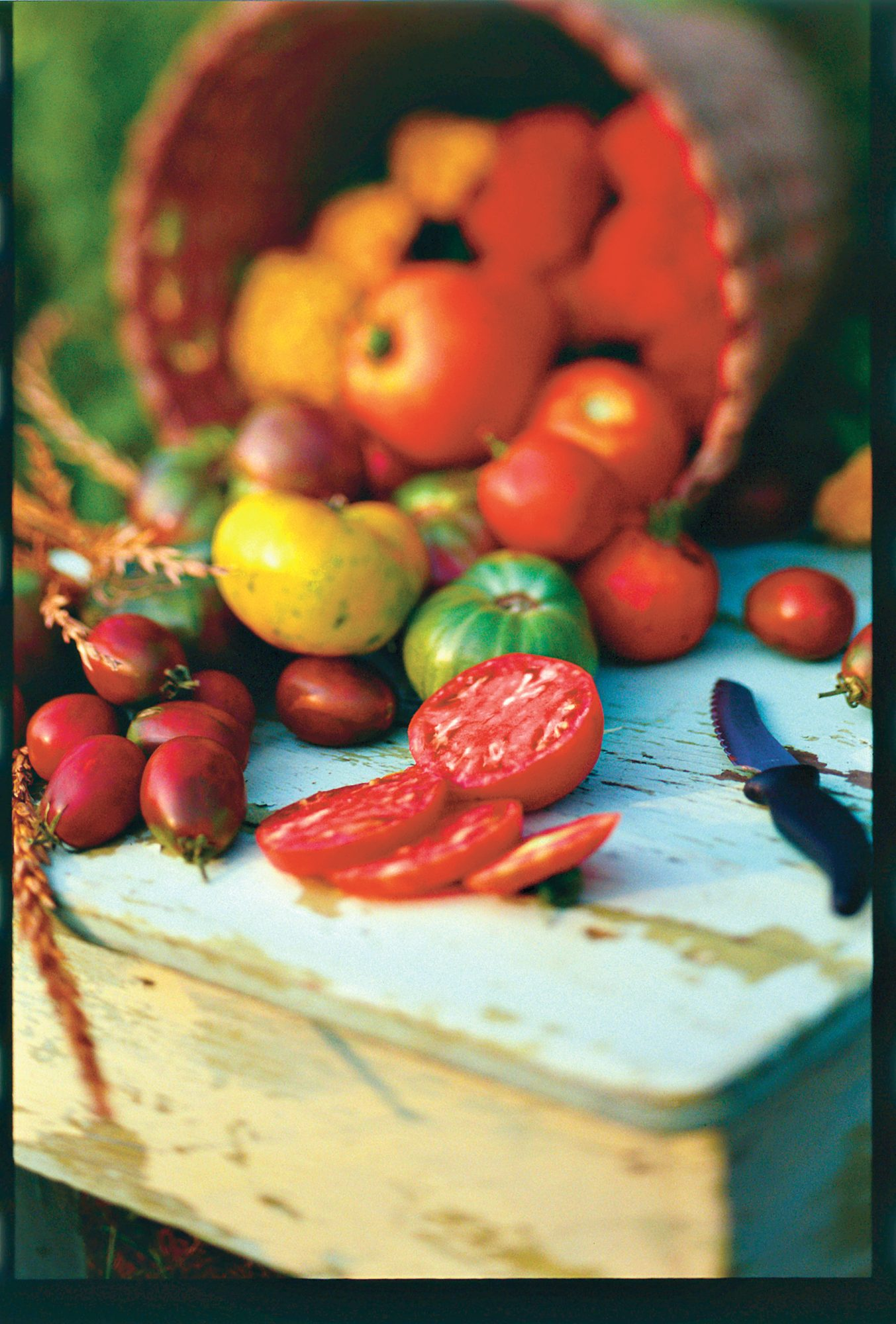 It's Time to Grow the Best Tomatoes