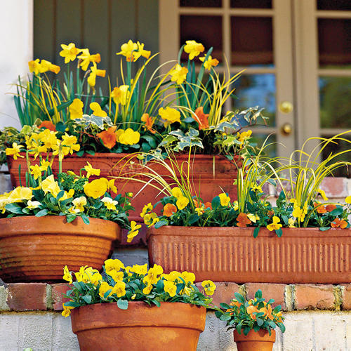 Colorful Fall Containers