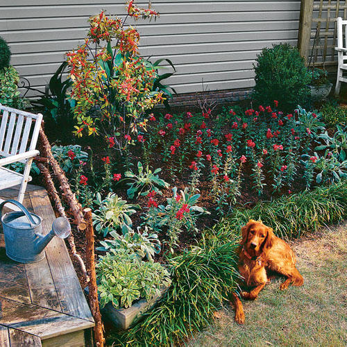 Goal: Garden in a Weekend