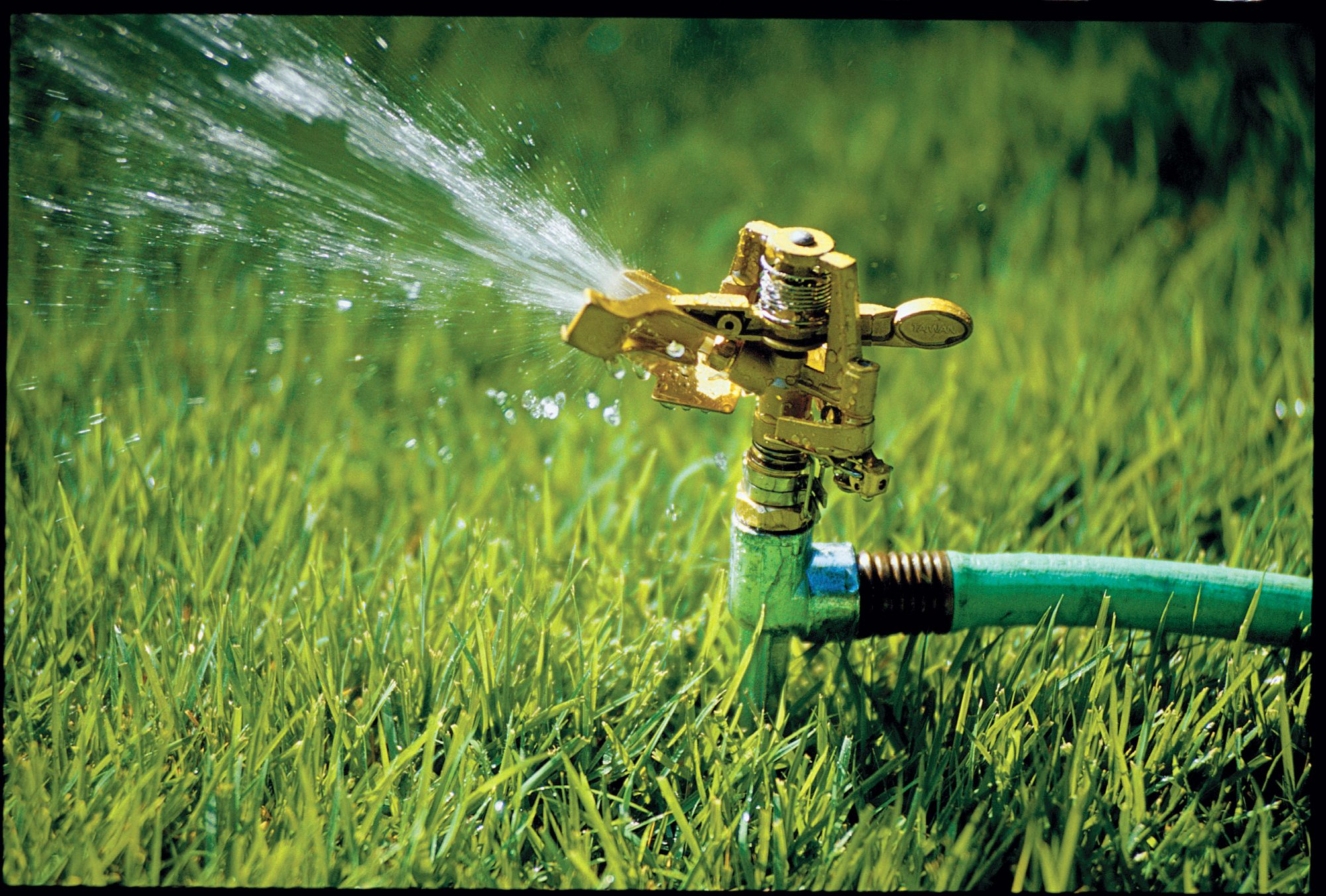 Image result for sprinkler in grass