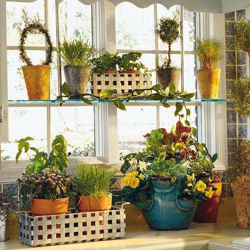 Kitchen Window Herb Planter: Bring In The Herbs