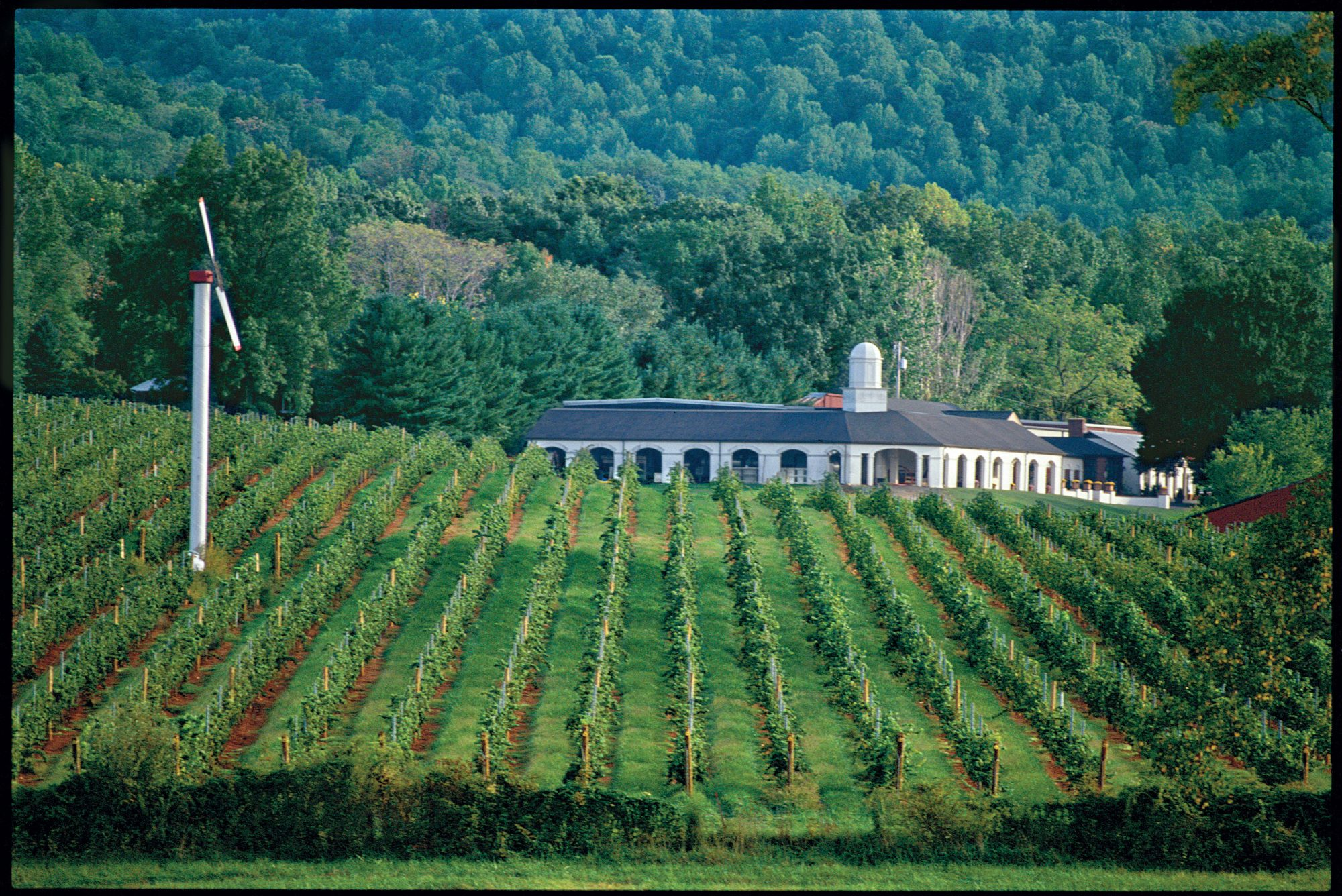 Toast Our Wine Country (VA) (PROMO)
