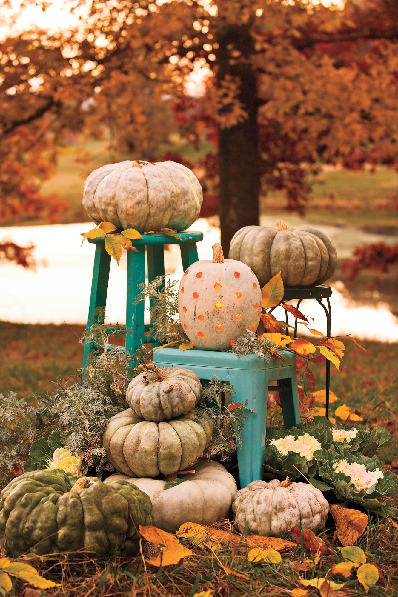 Bright Pumpkins
