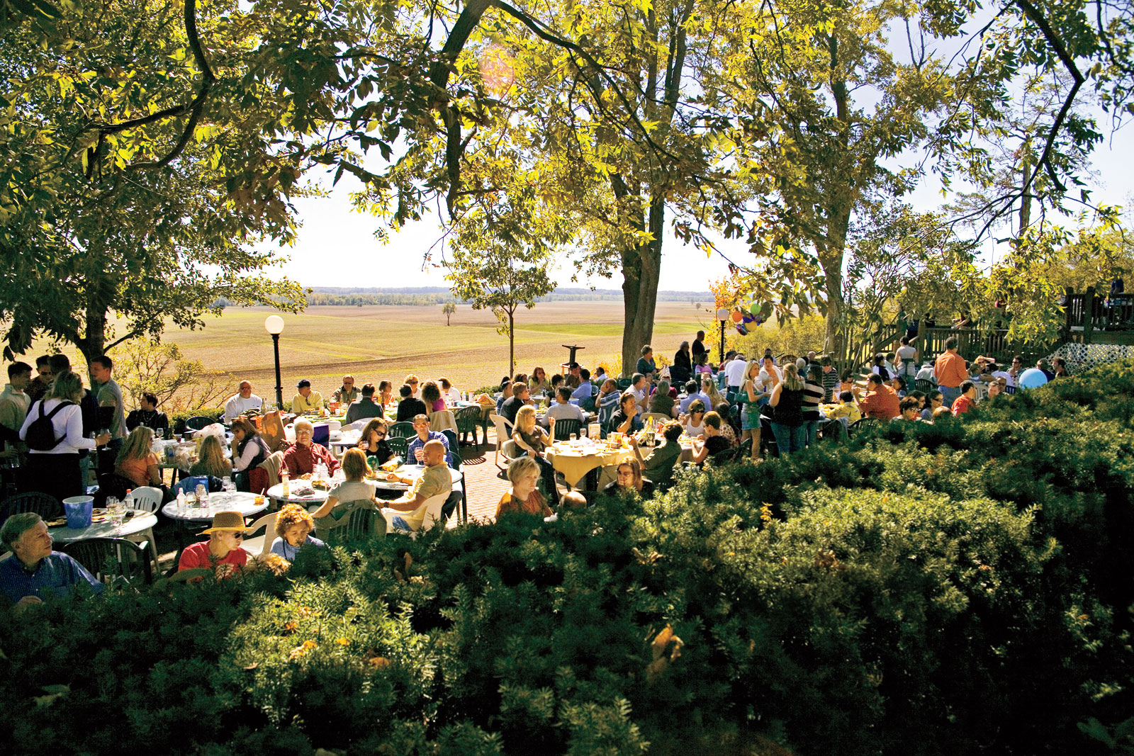 Best Southern Travel Destinations: Missouri Wine Country