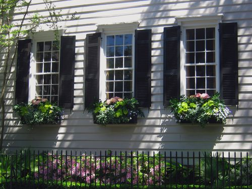 Charleston 39 s wonderful window boxes southern living - English style window boxes living facades ...