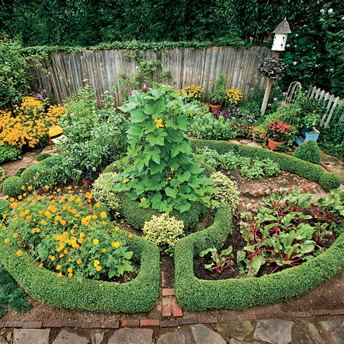 Back Yard Potager: Savvy Garden Design Secrets