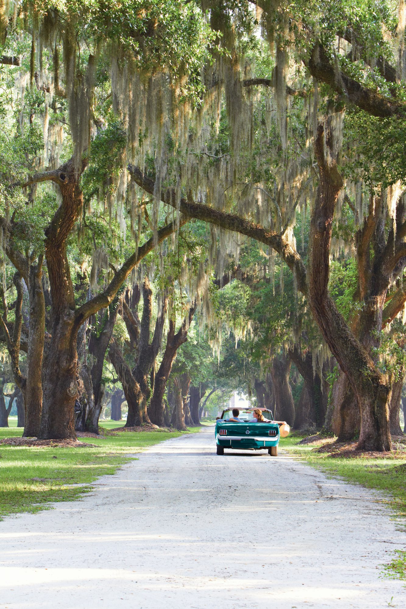 Travel the Carolina Lowcountry