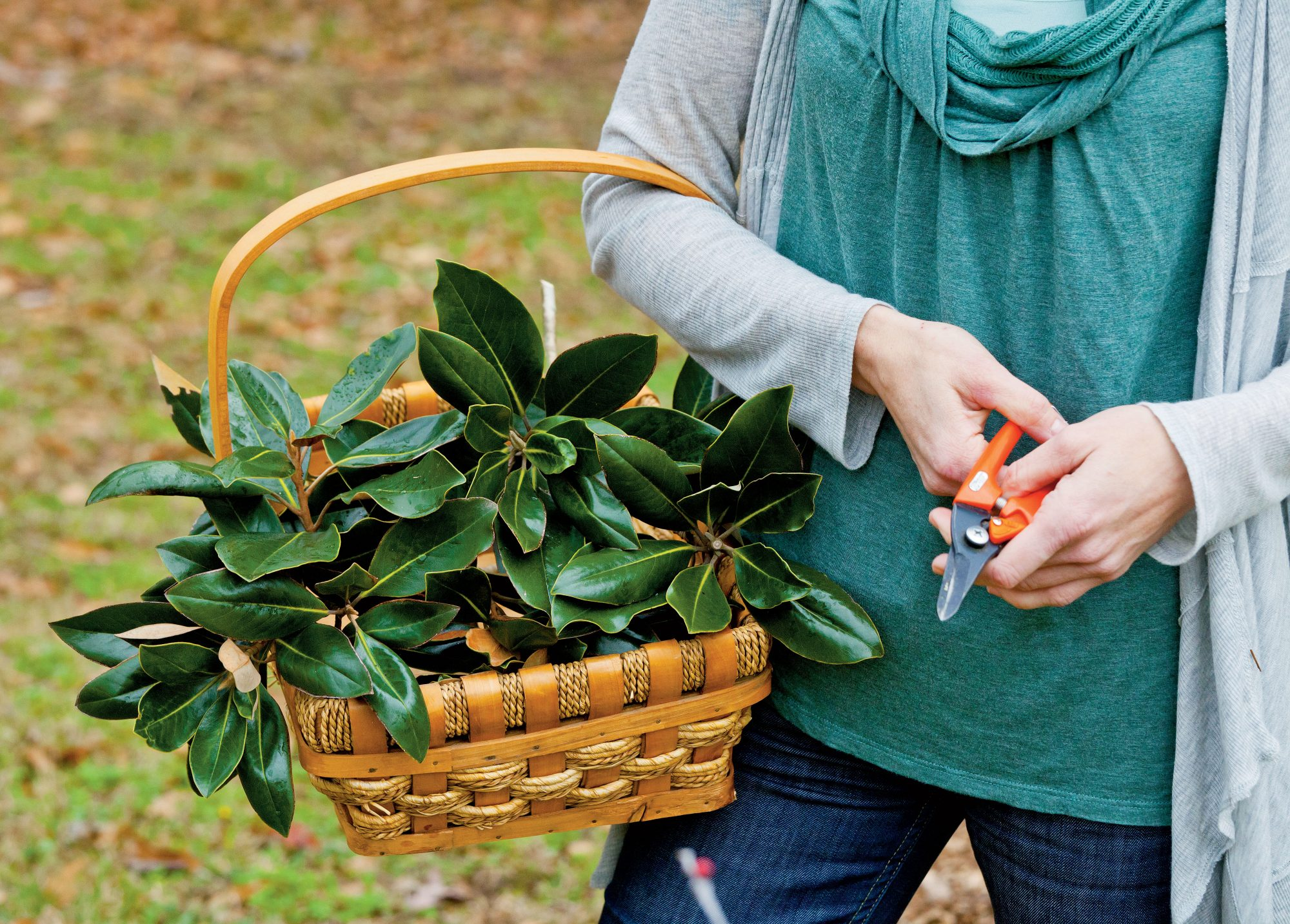 4:00 p.m. Foraging for Foliage