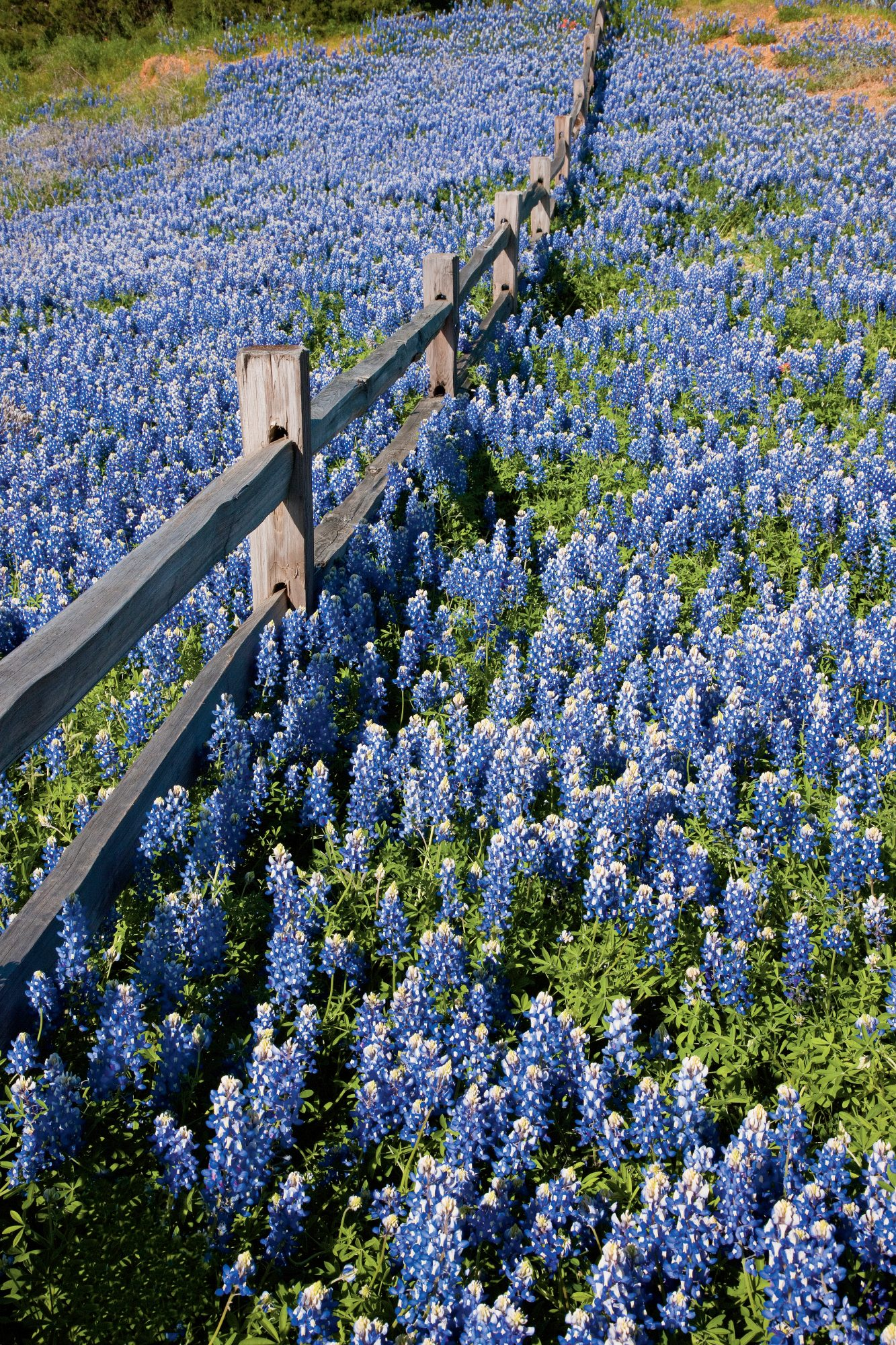 texas hill country road trip southern living