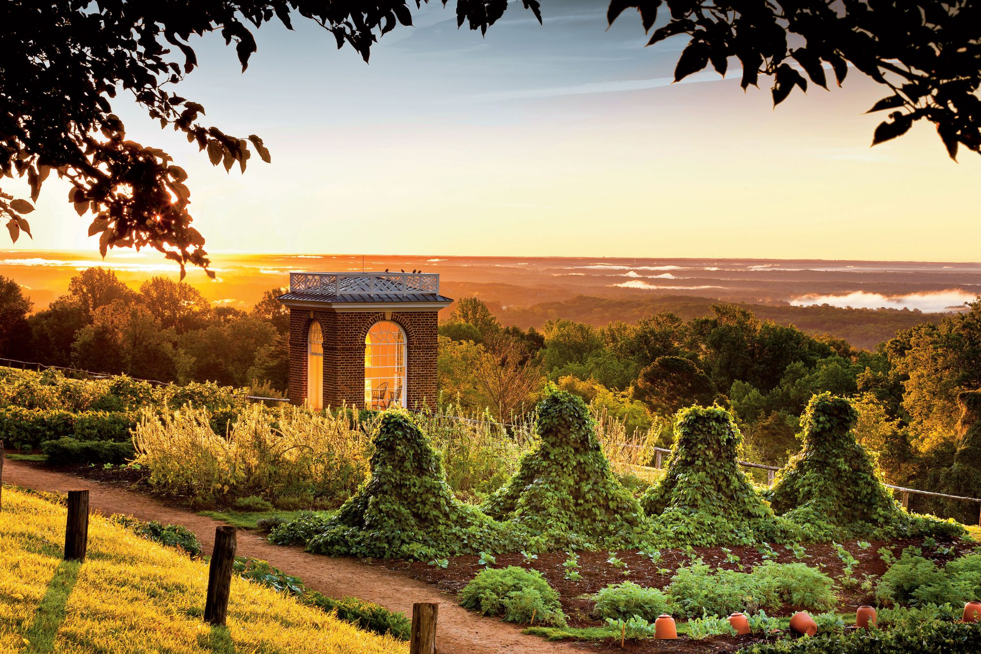 Breaking Ground at Monticello - Southern Living