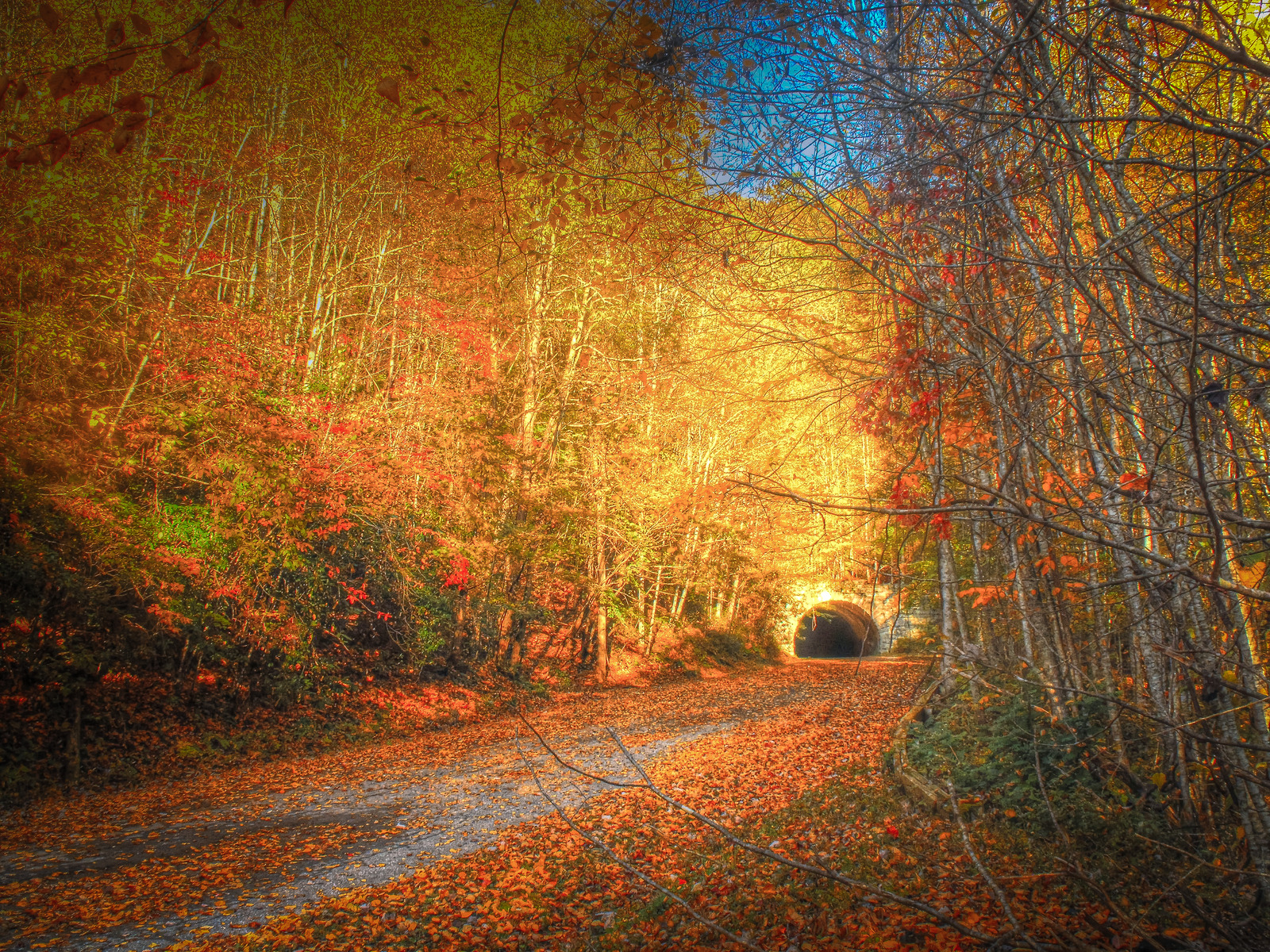 Destinations To See Fall Leaves In The South Southern Living - 8 best places in the us to watch fall foliage