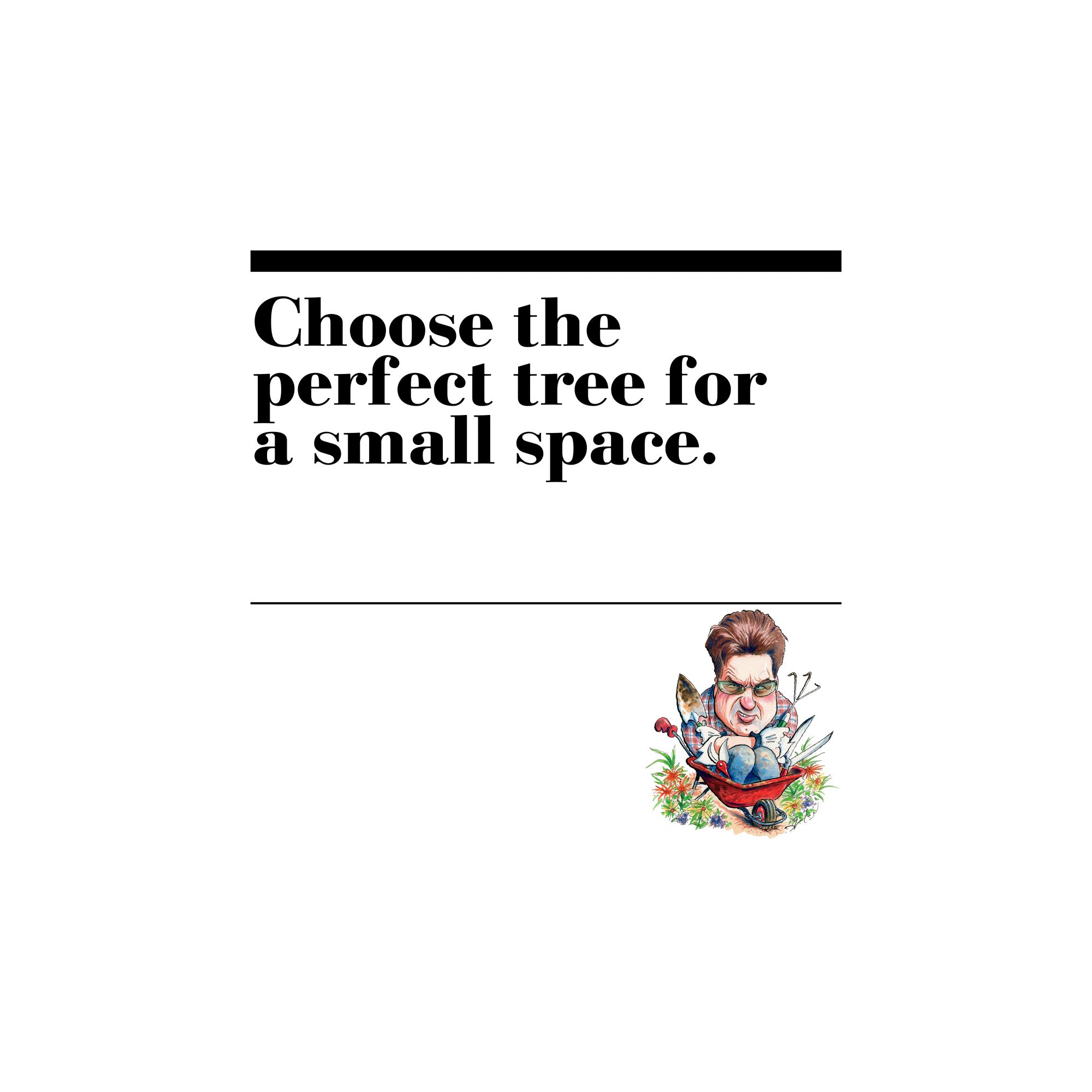 22. Choose the perfect tree for a small space.