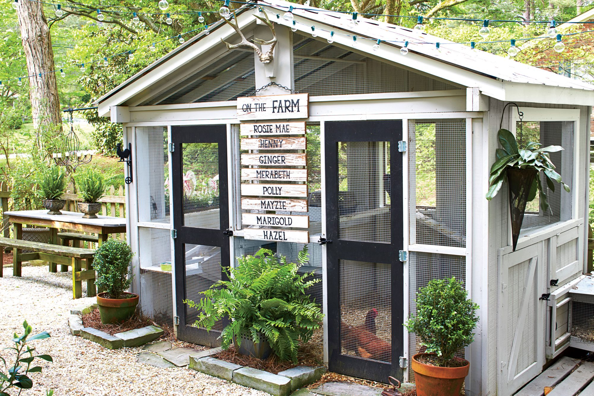 Personalized Chicken Coop