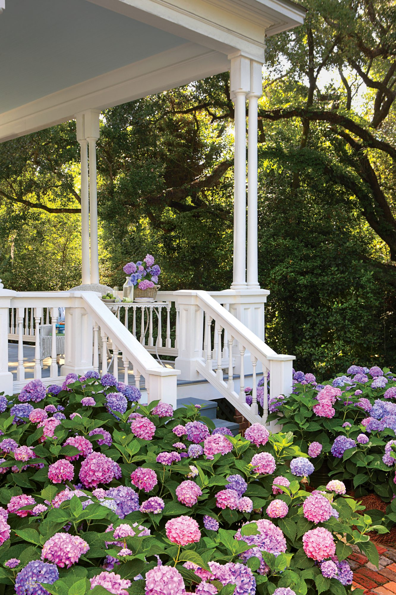 Pink and Purple Hydrangeas with White Porch