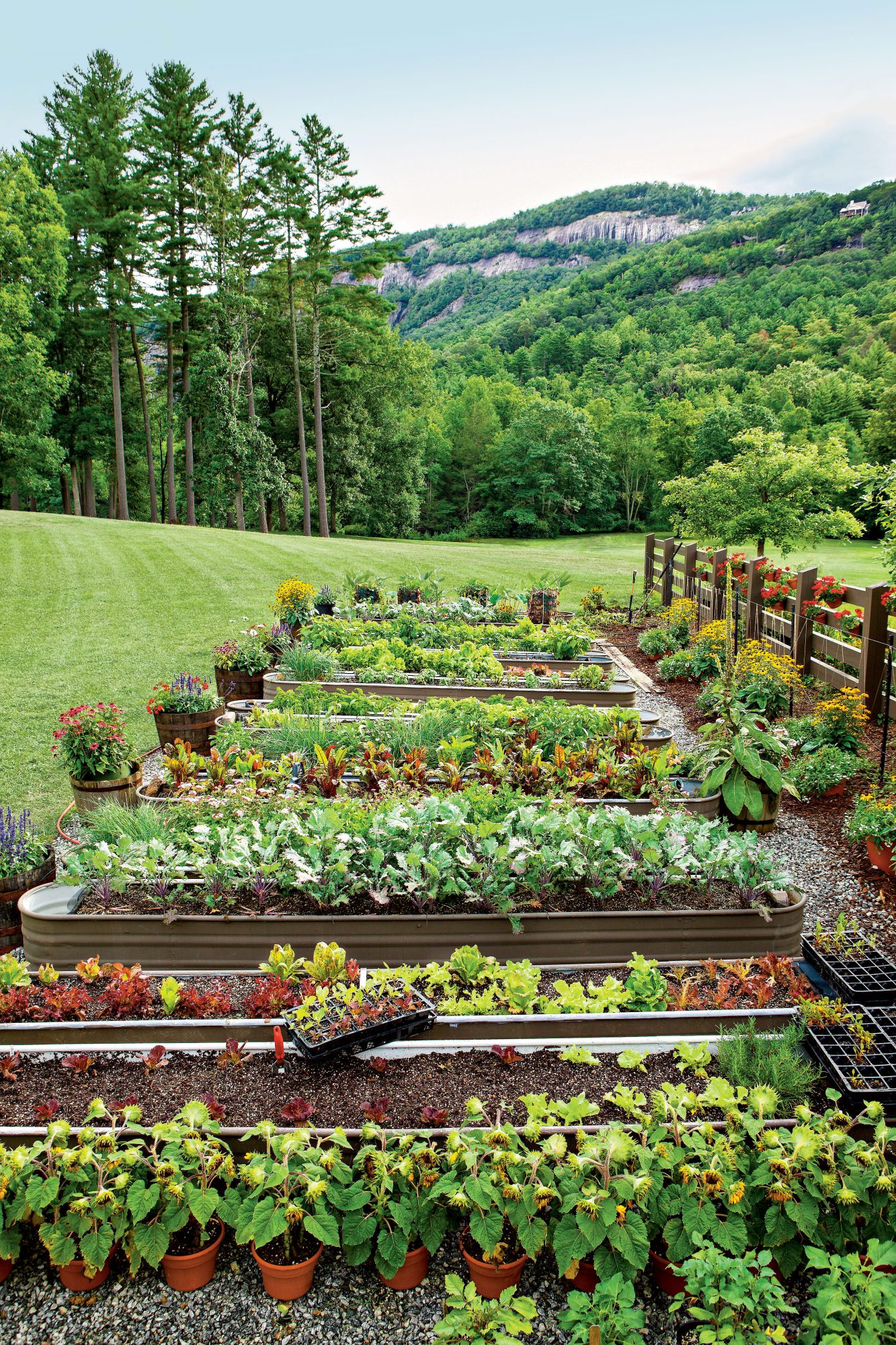 How To Keep Your Garden Growing All Summer Long - Southern ...