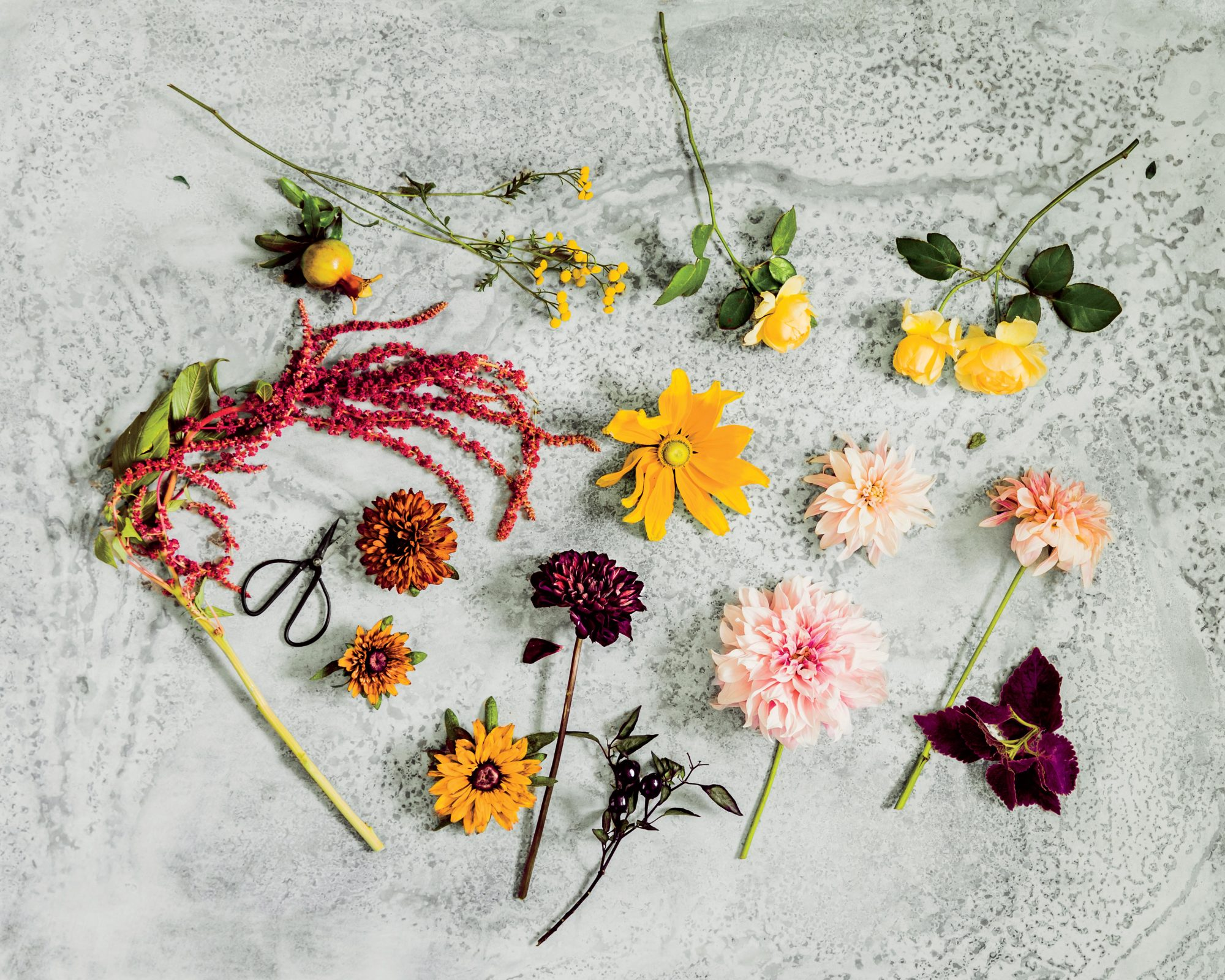 Materials for Flower Arrangement
