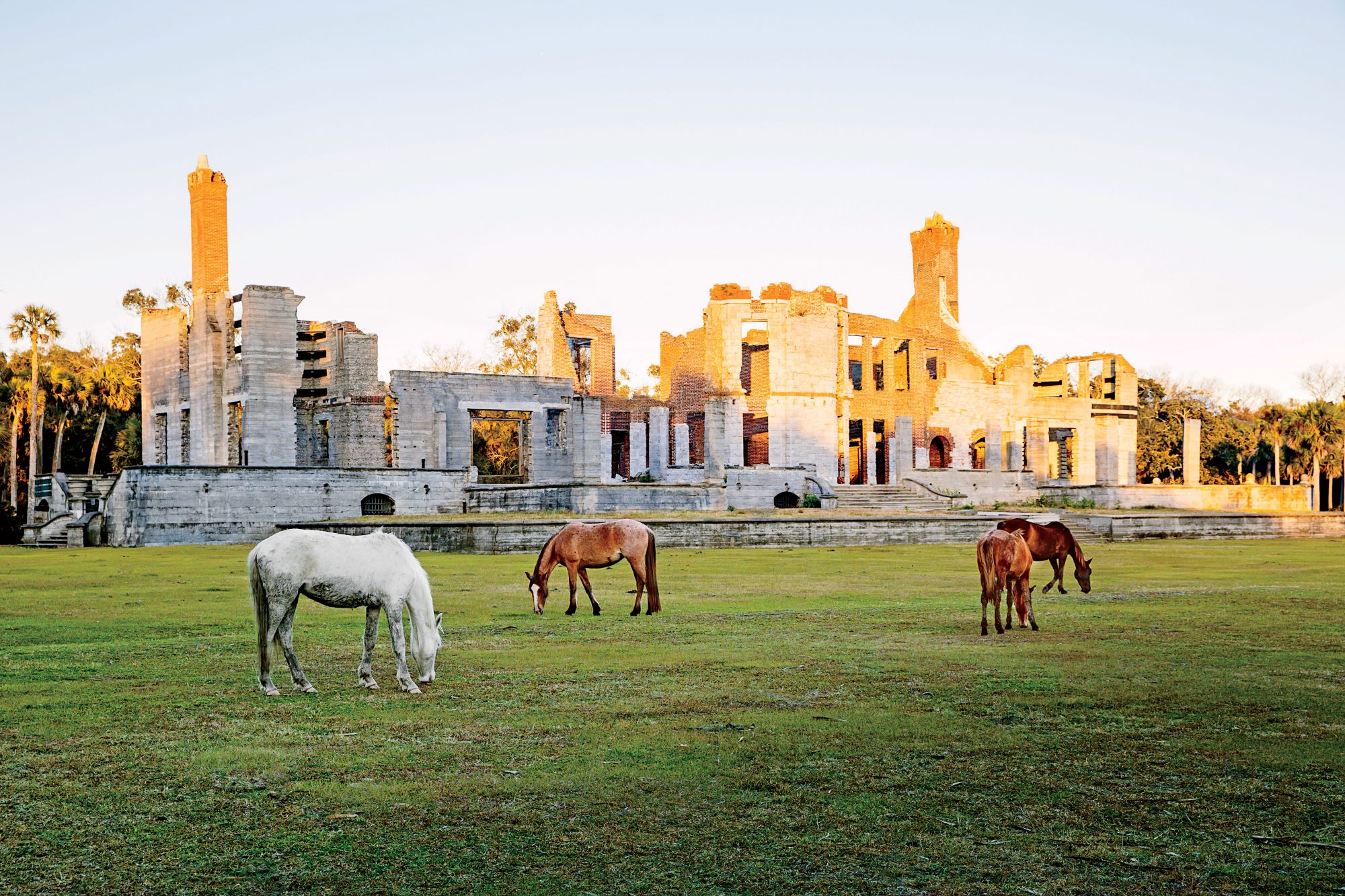 Georgias Cumberland Island Island In Time Southern Living