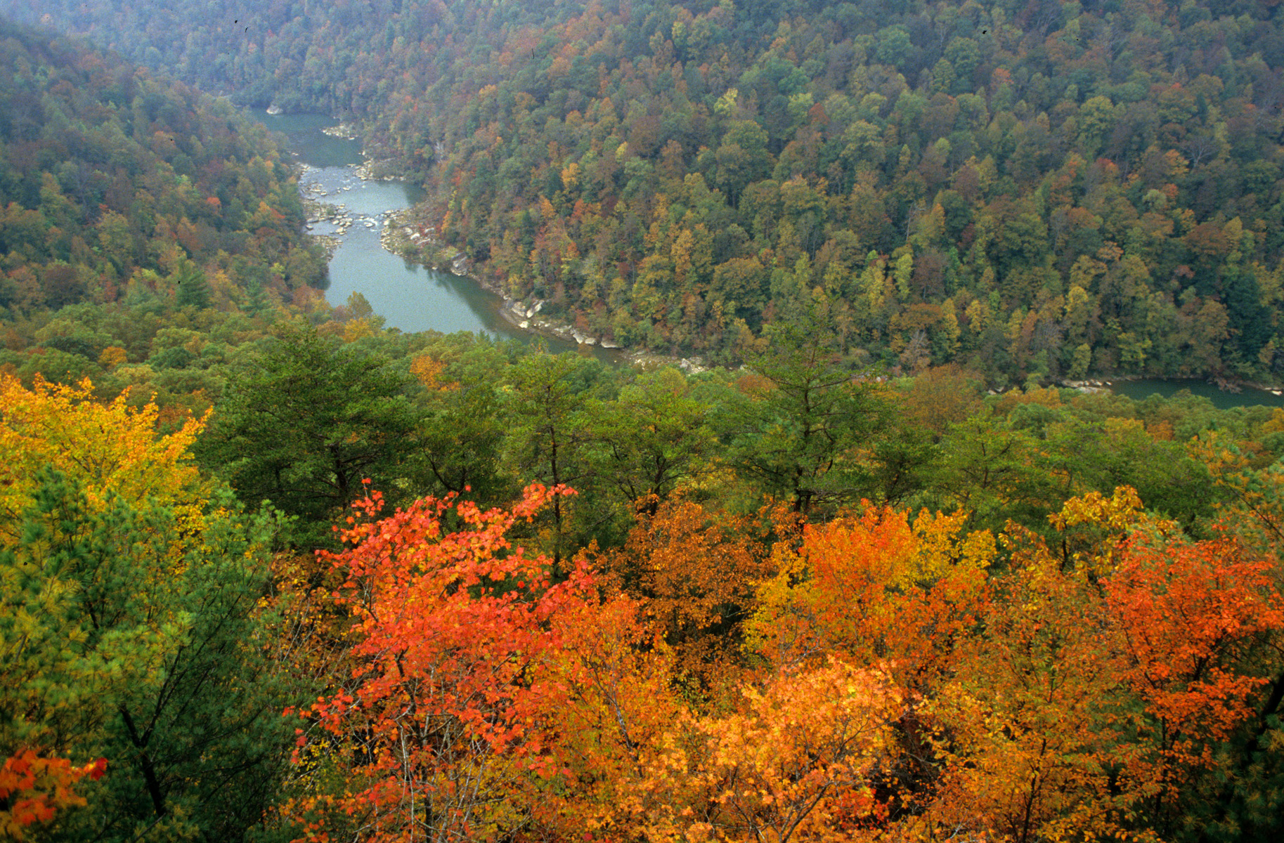 Big South Fork National River and Recreation Area Fall Color