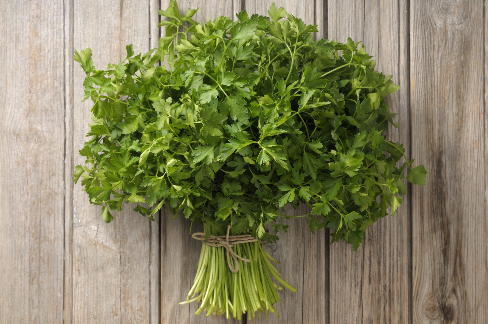 RX_1610_Health_Foods That Fight Acid Reflux_Parsley