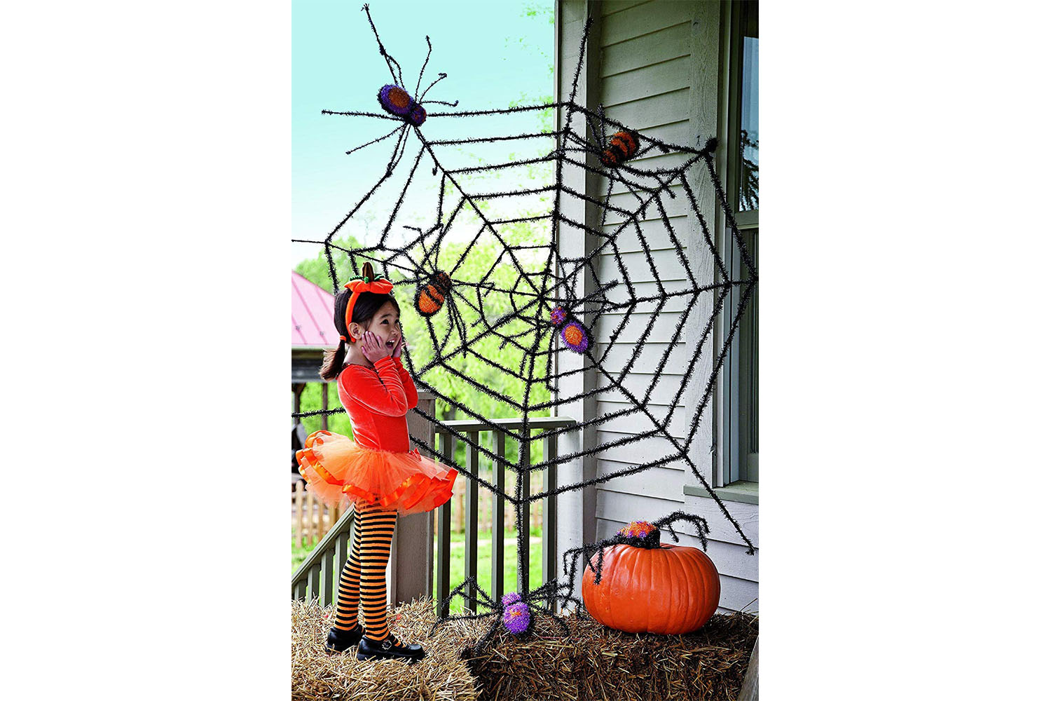 Giant Spider Web and Spiders