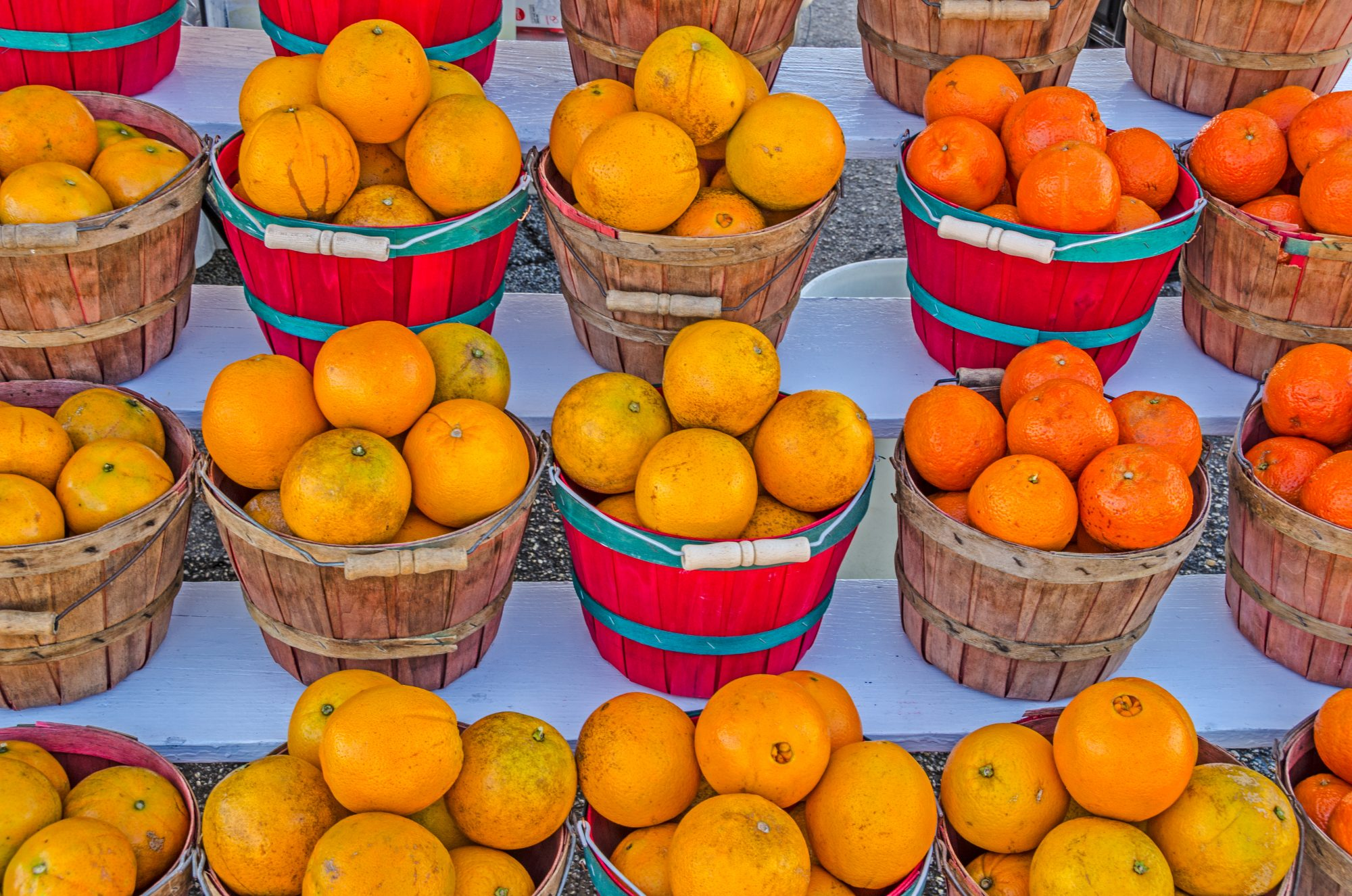 Basket of Honeybell Oranges