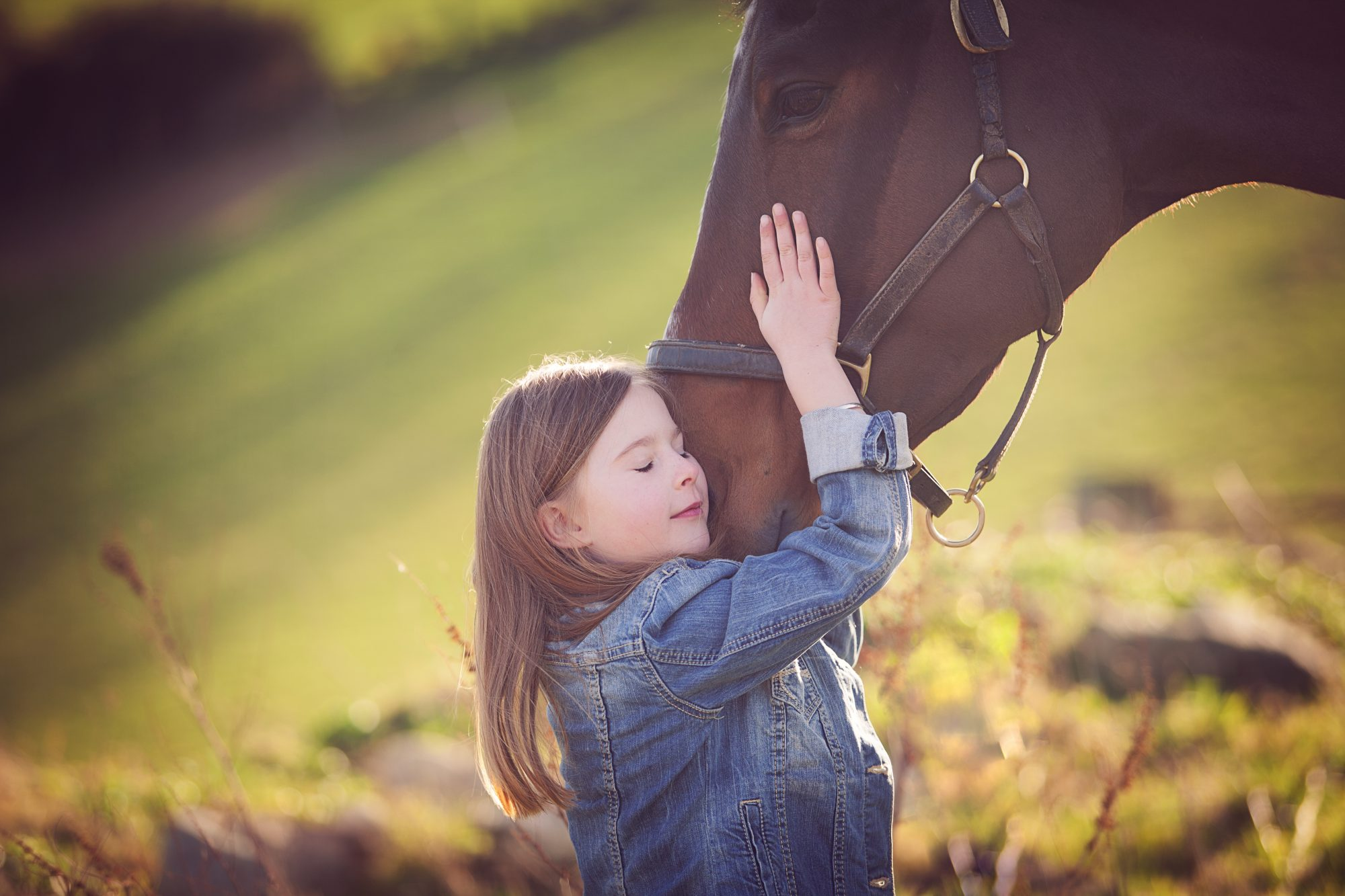 Young girl with brown horse