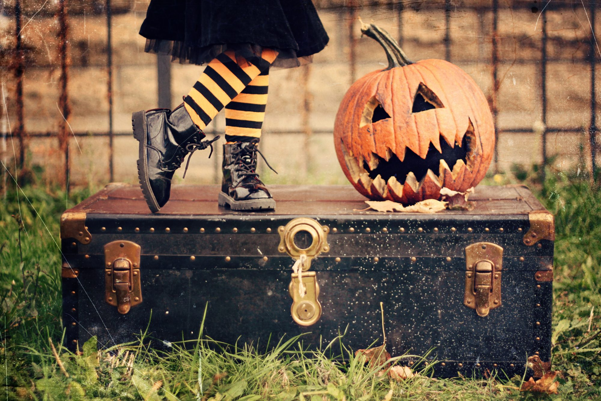 Halloween Trunk with Pumpkin and Little Striped Legs
