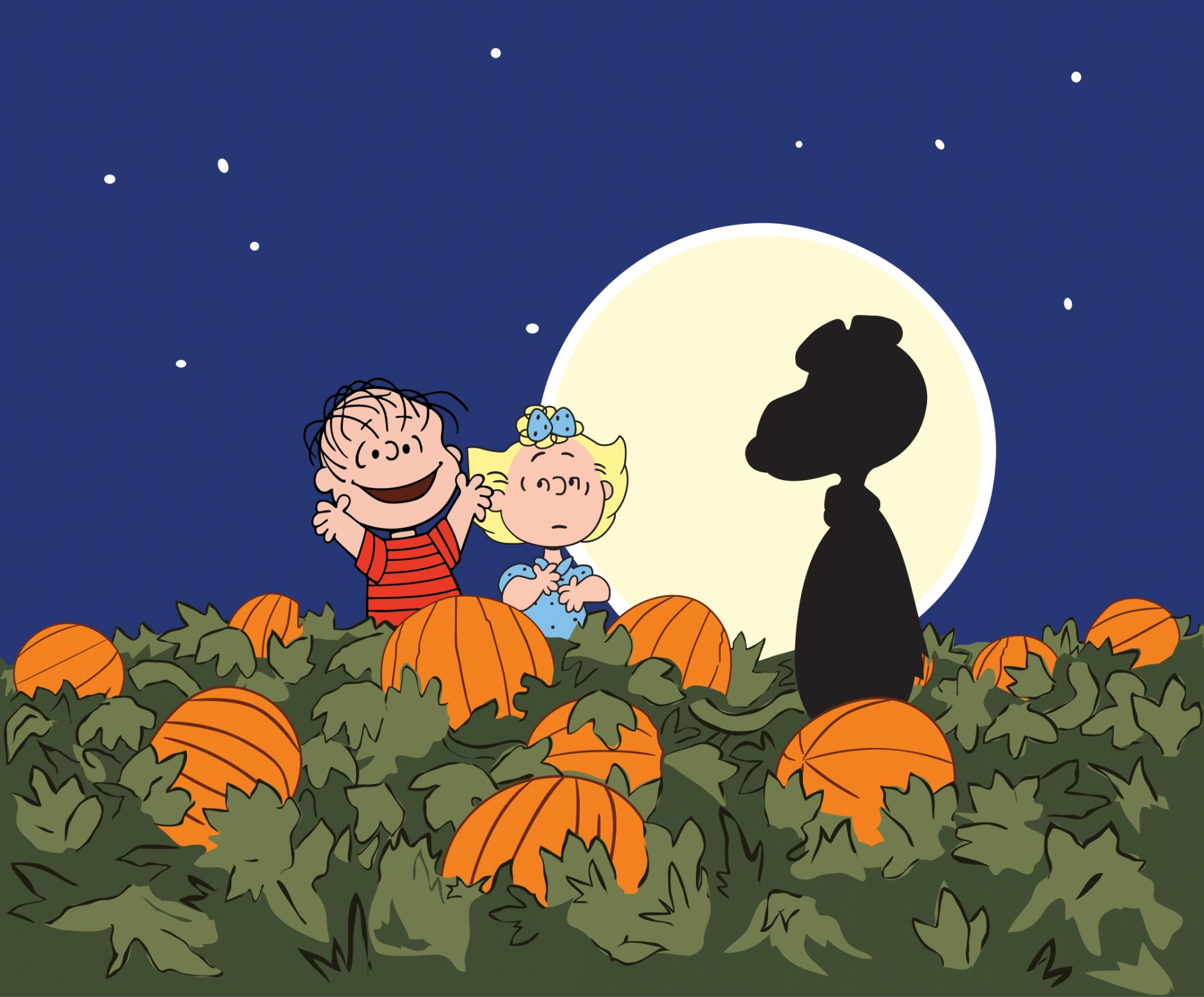 Scene from Charlie Brown and the Great Pumpkin